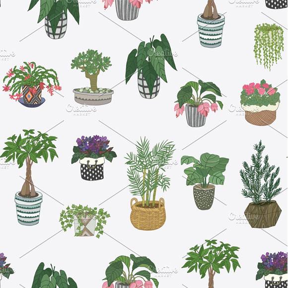 树叶纹理笔刷_绿色自然植物盆栽多肉仙人掌盆景素材-窝窝素材站